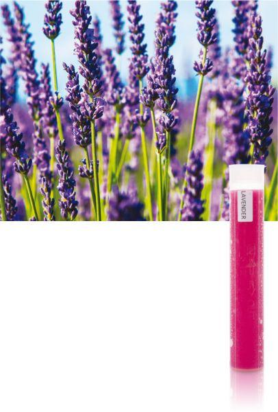 Aroma-VitaC-Gelfilter Lavendel für SPA Sky